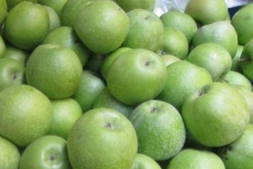 Симиренка сорт яблуні